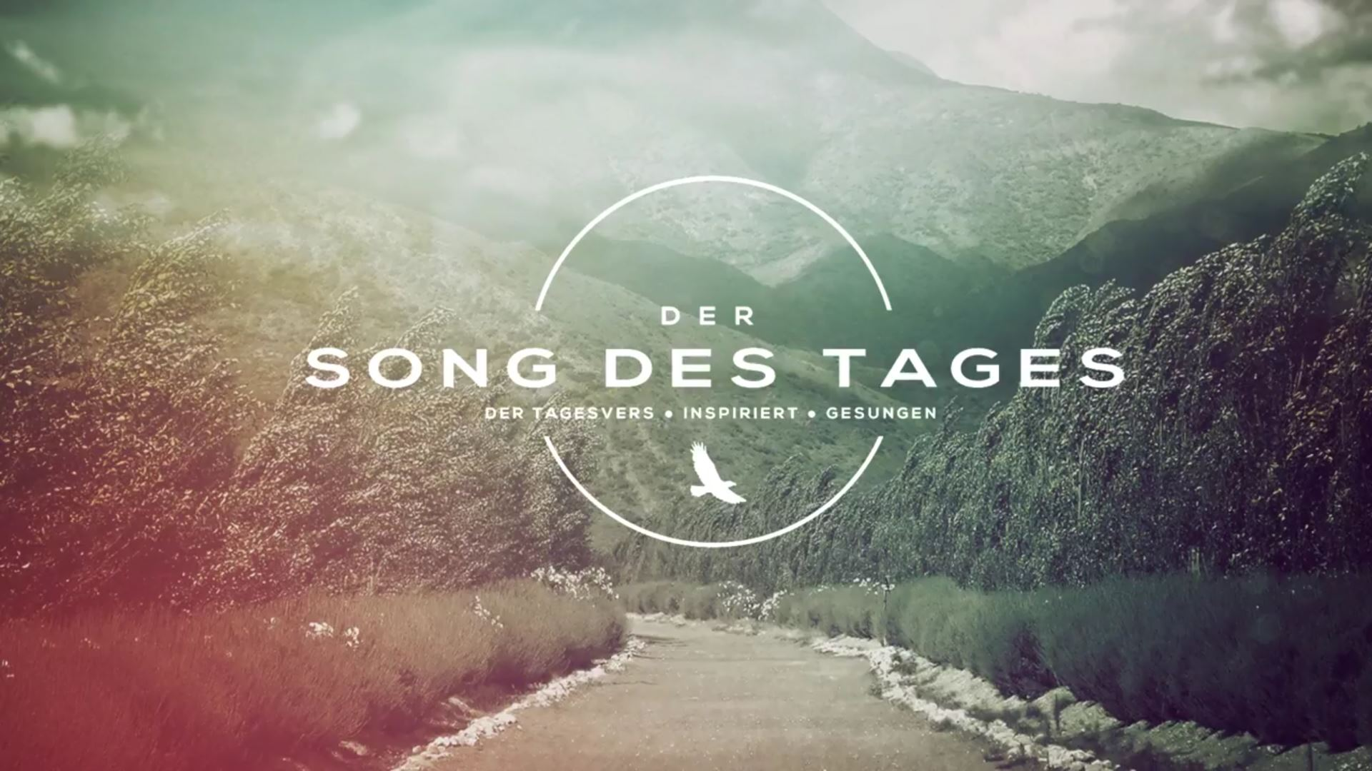SONG DES TAGES | Sprüche 16,3
